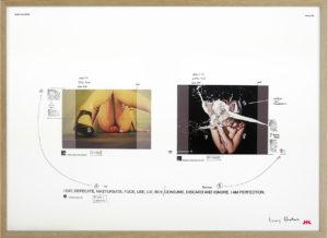 #225 framed LR